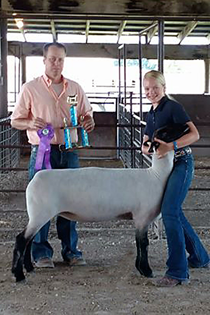 ... Champion Suffolk and Grand Champion Ewe at the 2016 Tri County Fair
